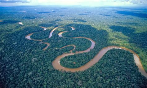 amazon river amazon river south america 11 pic awesome pictures
