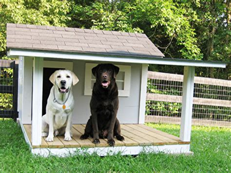 large dog houses for two dogs dogs large dog houses for two dogs animalgals dog houses for two dogs 450x338px