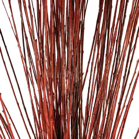Vase On Sale Decorative Branches Straight Willow Branches Brown