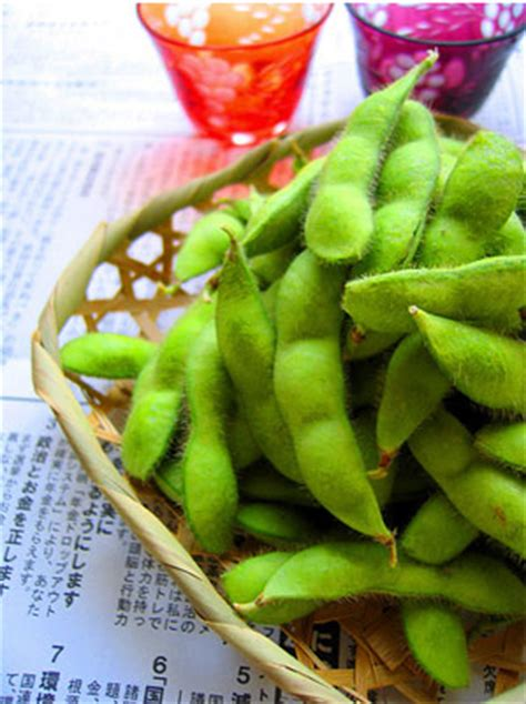 can dogs eat edamame what are you today page 100 no holds barred political forum america s