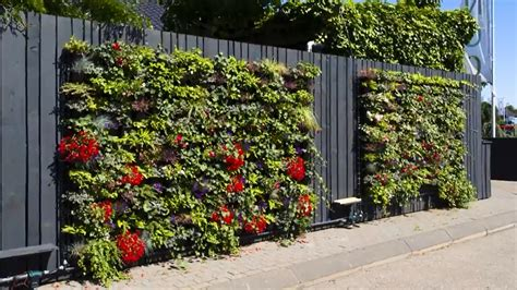 Green Wall Garden Landtech Soils Green Walls Bin Fen Modular Green Wall