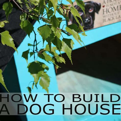 adding a puppy to a house with a dog adding a puppy to a house with a how to build a house adding shingles to a house