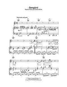 baby shark piano chords 1000 images about inked on pinterest shark tattoos