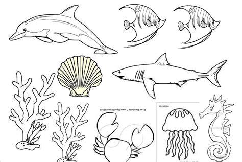 Mewarnai Hewan Laut gambar mewarnai hewan laut gambar pedia
