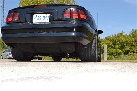 mustang forums canada hello from toronto are canada mustangforums