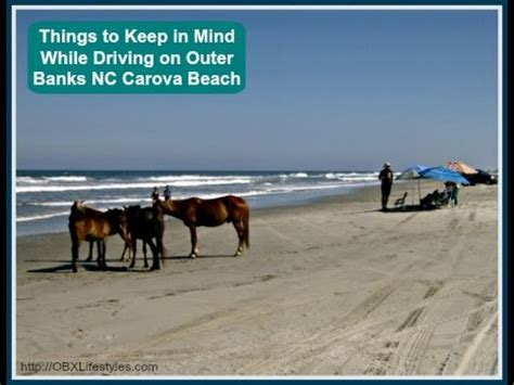 things to keep in mind while driving on outer banks nc carova beach youtube