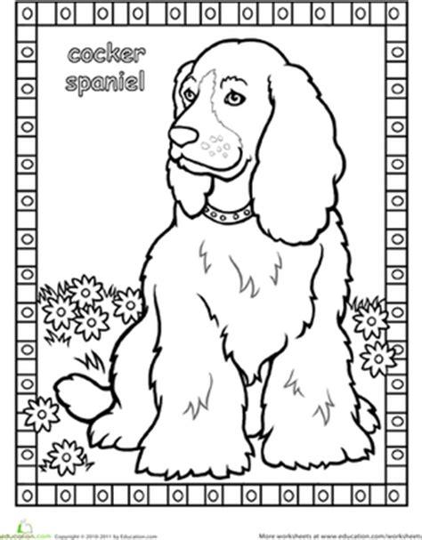 cocker spaniel coloring page education com
