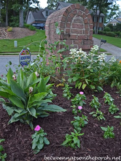 mailbox curb appeal ideas fall mailbox garden ideas photograph add curb appeal with