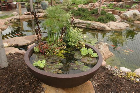 Planter Pond by Aquascape Your Landscape Create A Container Water Garden