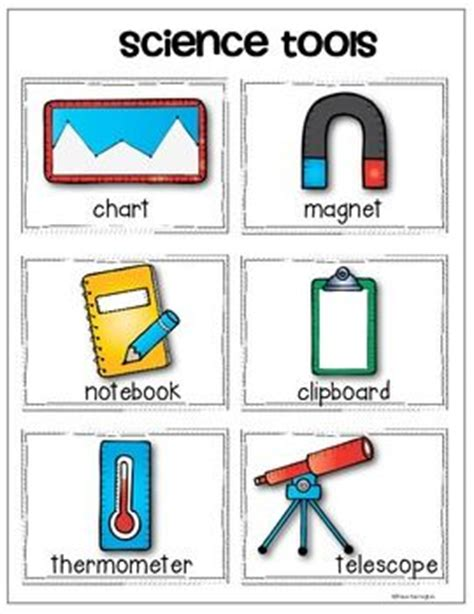 Science Tools Worksheet Kindergarten by Science Tools Vocabulary Cards And Anchor Chart Pack For