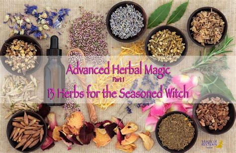 Kitchen Magic Herbs 25 Best Ideas About Herbal Magic On Magick