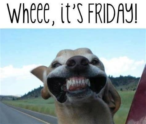 Its Friday Meme Funny - it s friday images