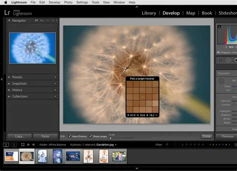 tutorial adobe photoshop lightroom 6 photoshop lightroom tutorials lynda com