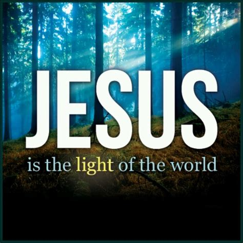 Jesus Is The Light That Shineth In Me Lyrics by 389 Best Images About Lighthouse Scriptures On