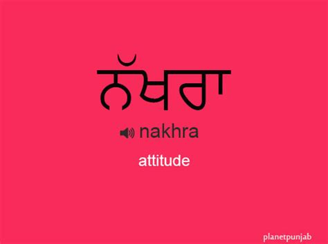 Punjabi words nakhra attitude tantrums or whimsical behavior
