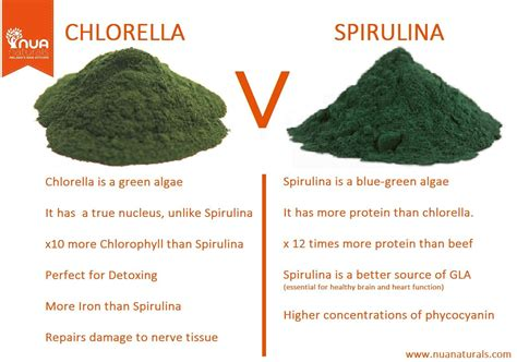 Spirulina Vs Chlorella For Detox by Difference Between Chlorella And Spirulina Health Food