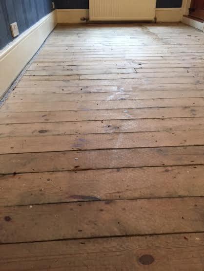 care of pine floors pine flooring the maxymus reveal maxymus sanding