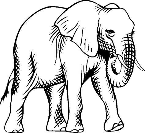 animales peligro extincion peru para colorear imagenes para colorear animales en peligro de extincion