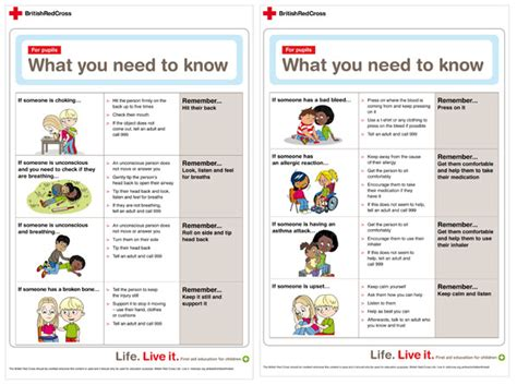 red cross first aid information sheet free early years
