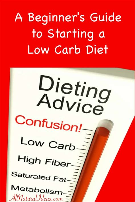 5 Reasons To Start A Low Carbohydrate Diet low carb diet beginners guide to starting all ideas