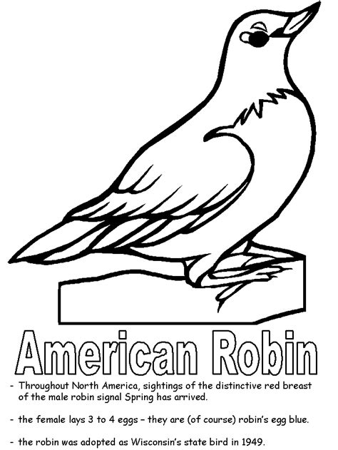 American Robin Coloring Page Wisconsin Coloring Pages