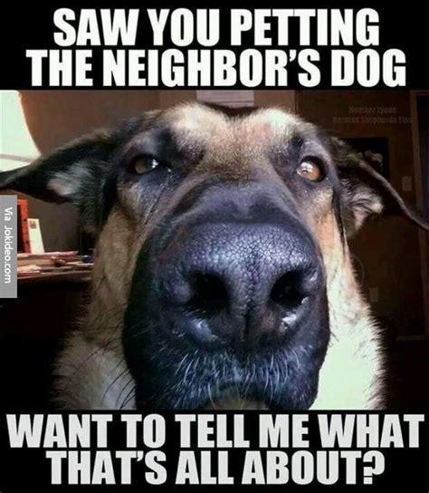 Pet Meme - saw you petting the neighbors dog meme