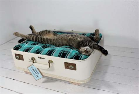 upcycled cat bed fresh start for vintage suitcases pet furniture from