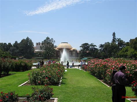 Expo Gardens by South Los Angeles La Exposition Park Garden Flickr