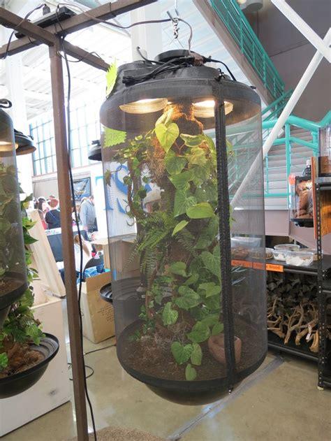 design  chameleon cage     slc reptile