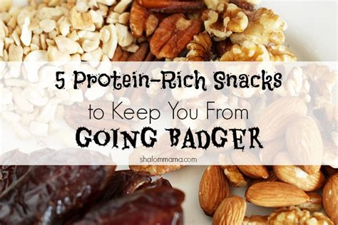 protein rich snacks 5 protein rich snacks to keep you from going badger tiny