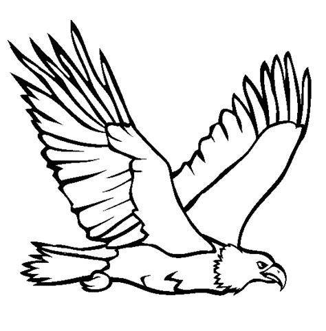 bald eagle coloring pages print bald eagle coloring printable pinteres