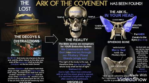 The Found the real ark of the covenant found in the bahamas