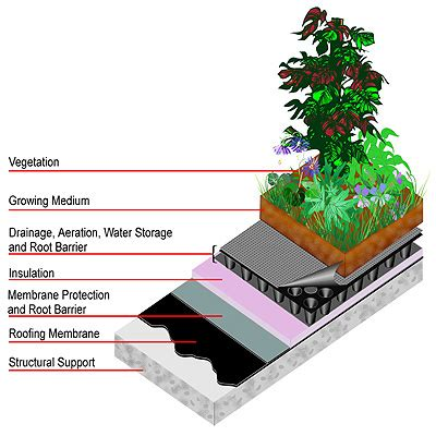 design guidelines green roofs lid urban design tools green roofs