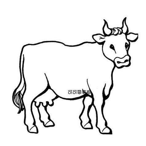 skinny cow coloring page 牛简笔画 可可简笔画