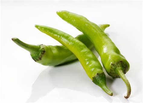 green chili recipe tundra restaurant supply