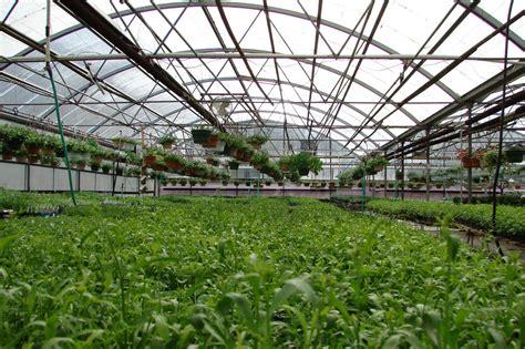 india gps service to boost polyhouse farming gis resources