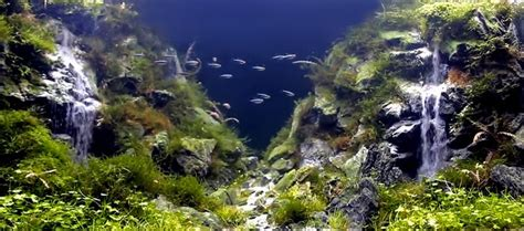 Aquascaping Rocks What S Cooler Than An Underwater Waterfall How About Two