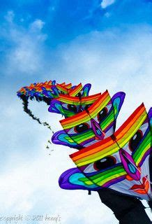kite design indonesia 17 best images about go fly a kite on pinterest fish