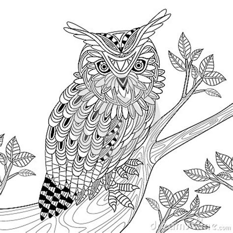 wise owl coloring page wise owl stock illustration image 60473973