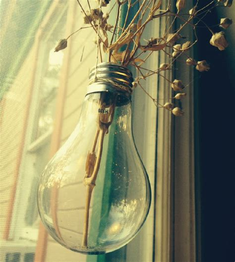 Light Bulb Planter Diy by How To Make A Hanging Lightbulb Planter Diy Ready