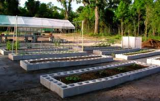 Gardening On Concrete Florida Raised Beds Gardens Growin Acres