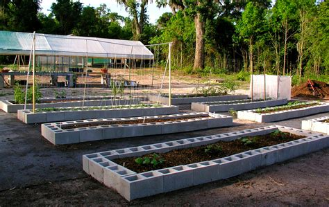 cinder block garden bed raised garden beds cinder blocks building a raised bed