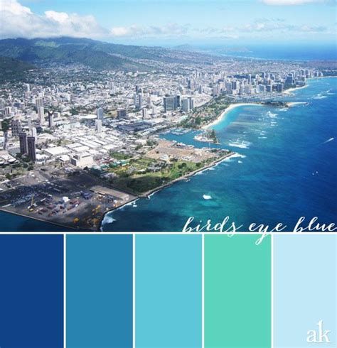 an inspired color palette based on honolulu blue cyan aqua sky blue color