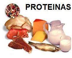 alimentos q tienen proteinas alimentos con proteinas la p 225 gina completa con alimentos