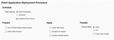 design application grace period oracle application management pack for oracle e business