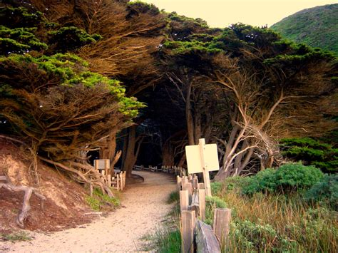 Pch Beaches - big sur beach directions turn off pch 1 on to sycamore canyon road west take one