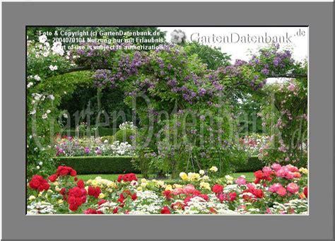 Britzer Garten Rosengarten by Rosengarten Im Britzer Garten Ehem Bugapark Roseng 228 Rten