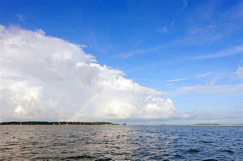 boat tour hilton head hilton head dolphin boat cruise