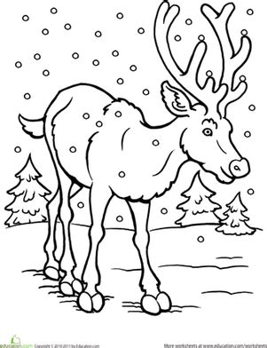 winter deer coloring page worksheets education com