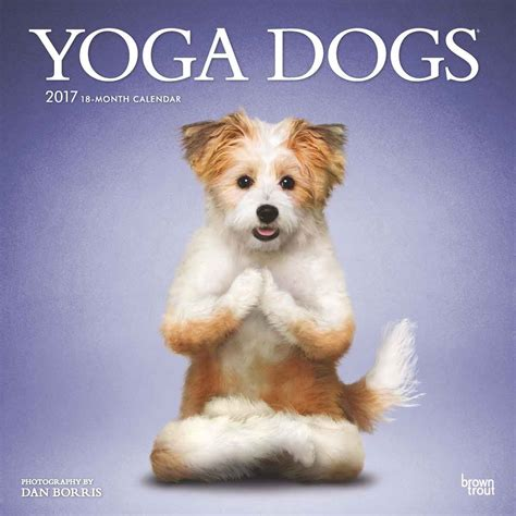 dogs dogs dogs calendar 2017 calendar club uk